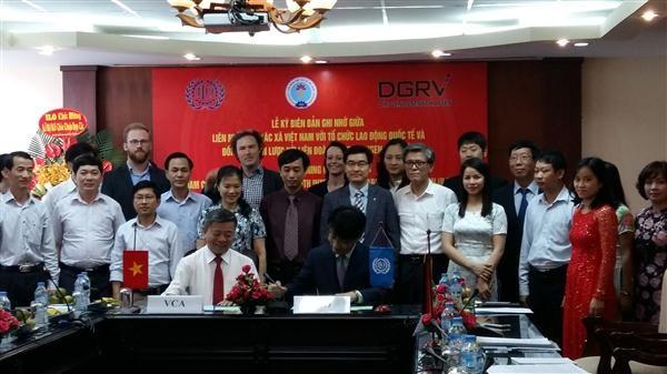 Menandatangani MoU antara ILO dan Persekutuan Koperasi Vietnam - ảnh 1
