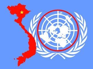 Posisi Vietnam setelah 39 tahun masuk Perserikatan Bangsa-Bangsa - ảnh 1