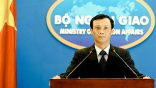 Vietnam Foreign Ministry: US report about Vietnam's human rights is biased  - ảnh 1