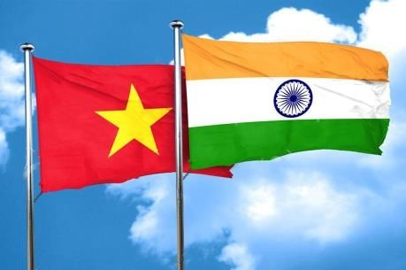 Vietnam-India ties have been progressing fast: The Diplomat - ảnh 1