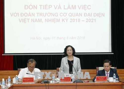 Overseas Vietnamese is inseparable from national unity: Party official - ảnh 1