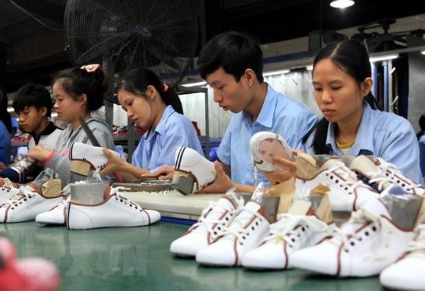 Vietnam, US seek to promote post COVID-19 trade of footwear - ảnh 1