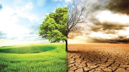 National strategy on climate change promoted - ảnh 1