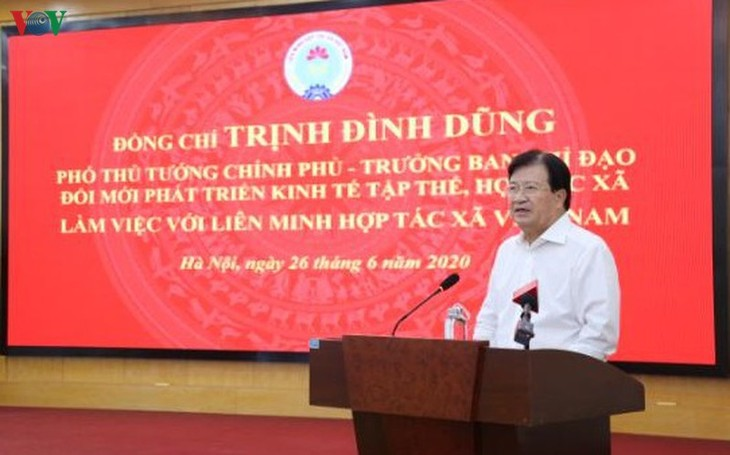 Deputy PM called for collective economy's development  - ảnh 1