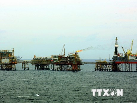 PVN's oil output hits 10.7 million tons in H1 - ảnh 1