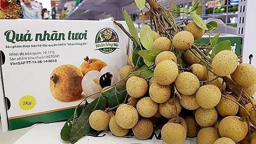 Fresh Vietnamese longan on sale in Australian market - ảnh 1