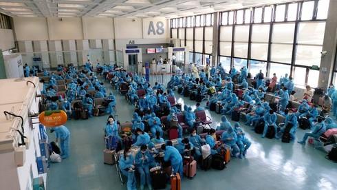 Vietnamese citizens repatriated from Taiwan (China) - ảnh 1