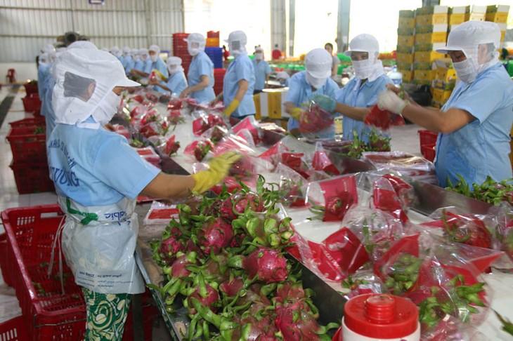 Vietnam-UK trade turnover soars to 650 million USD in January  - ảnh 1
