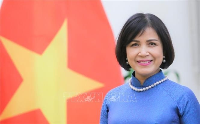Vietnam participates in WTO negotiations on fisheries subsidies - ảnh 1