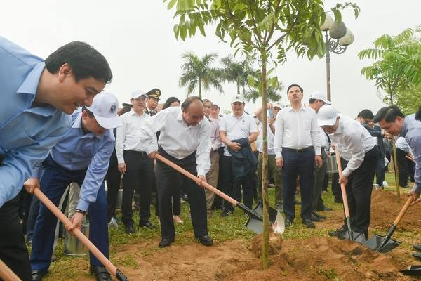 Prime Minister encourages Nghe An's tree planting, works with provincial leaders - ảnh 1