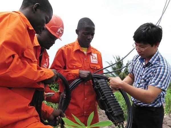 加强越南与莫桑比克关系 - ảnh 1