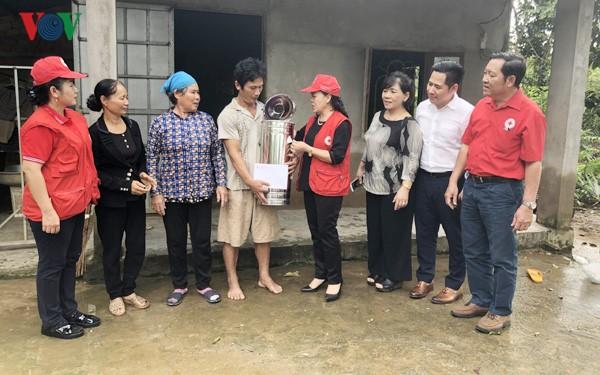 越南红十字会向西原和南部地区各省提供紧急援助 - ảnh 1