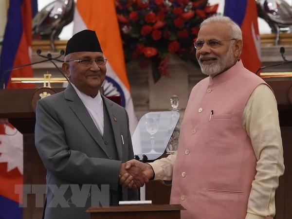 印度优先发展睦邻友好关系 - ảnh 1