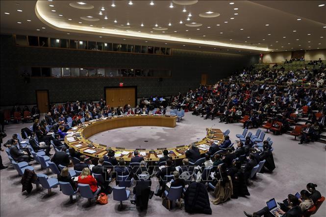 越南和联安理会:越南支持寻求叙利亚问题的政治解决 - ảnh 1