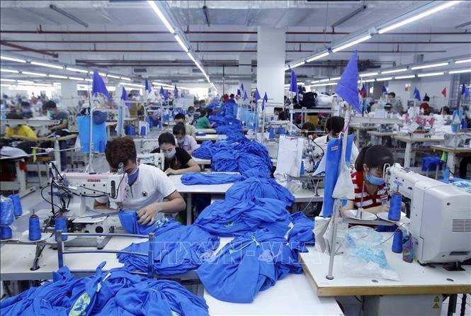 世行认为越南经济将会复苏 - ảnh 1