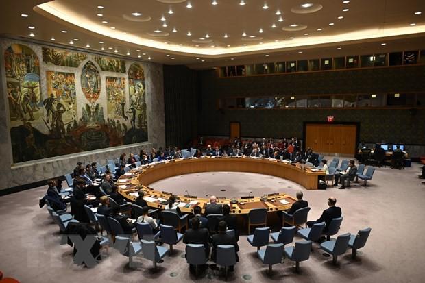 越南主持联合国安理会十个非常任理事国同联合国秘书长的视频会议 - ảnh 1