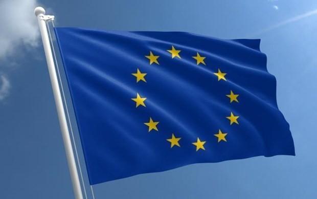 欧盟颁布限制外资企业收购资产的新规定 - ảnh 1