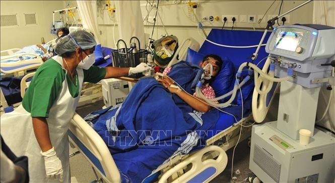 5月5日:世界新冠肺炎疫情更新 - ảnh 1