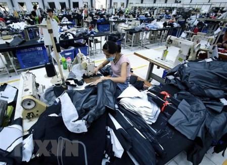 ВПТТП создает возможности для японских и вьетнамских предприятий - ảnh 1