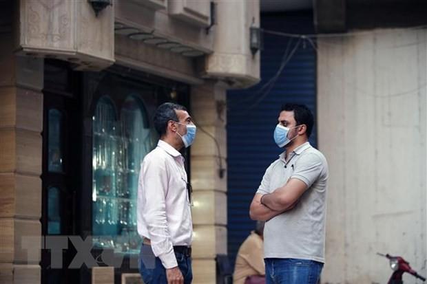 МВФ одобрил кредит на $5,2 млрд. для Египта - ảnh 1