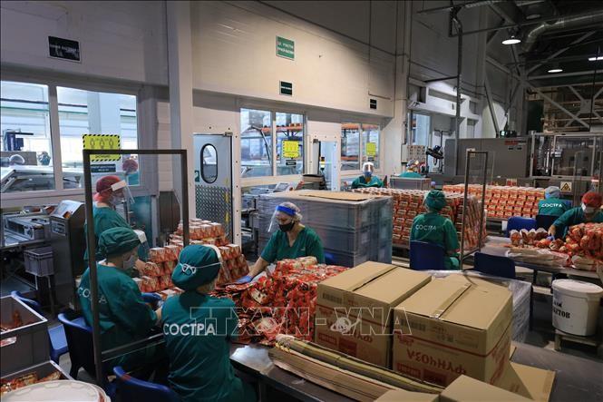Вьетнамские предприятия в РФ выстояли во время эпидемии COVID-19 - ảnh 1