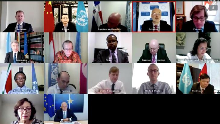 ООН отметила роль многостороннего сотрудничества во время эпидемии COVID-19 - ảnh 1
