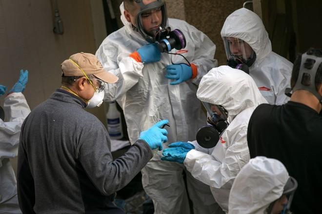 Число заболевших коронавирусом в мире превысило 14,6 млн человек - ảnh 1