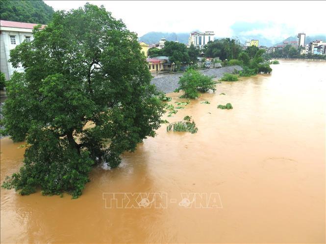 Премьер-министр Вьетнама потребовал ликвидировать последствия оползней в провинции Хазянг - ảnh 1