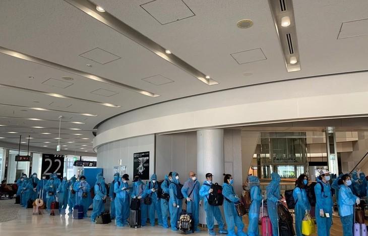 COVID-19: Возвращение на Родину граждан Вьетнама из Японии  - ảnh 1