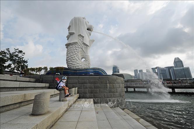 Ситуация с пандемией COVID-19 в Сингапуре, Республике Корея и Новой Зеландии остаётся сложной - ảnh 1