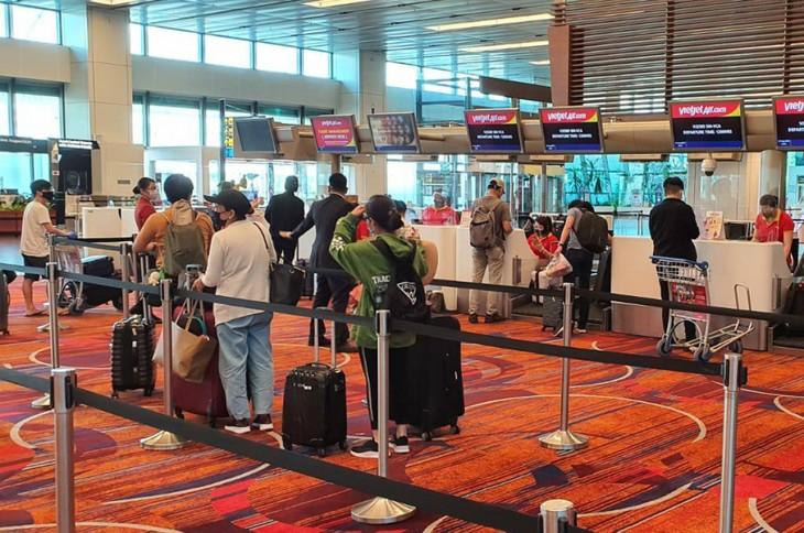 Возвращение вьетнамских граждан из Сингапура на Родину - ảnh 1