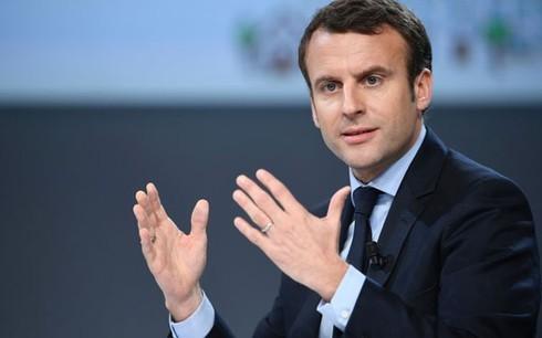 Франция призвала европейские страны дать общий быстрый ответ на существующую террористическую угрозу - ảnh 1