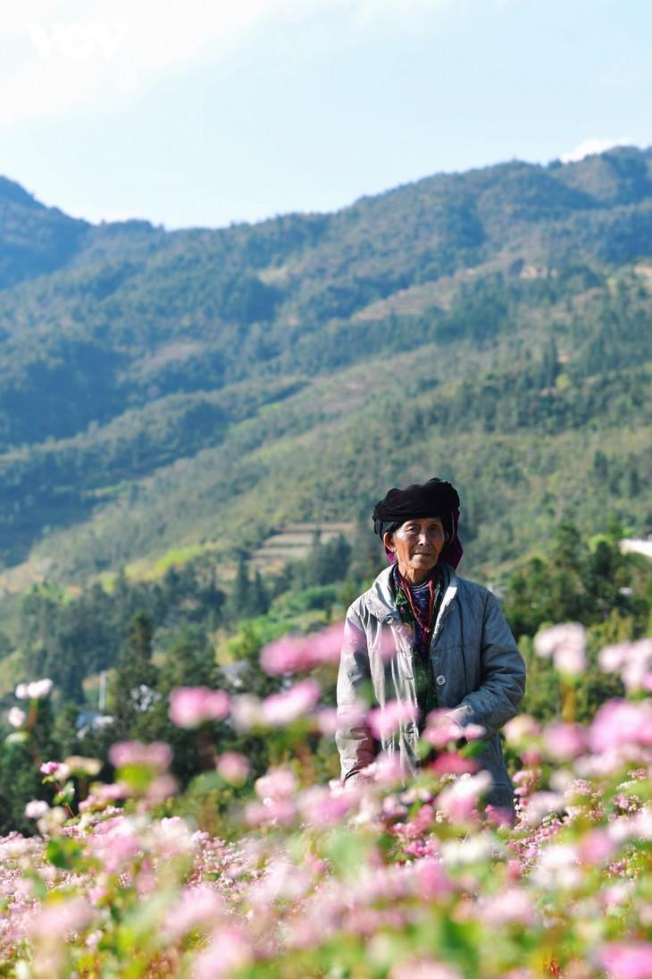 Провинция Хазянг в сезон цветения гречихи - ảnh 11