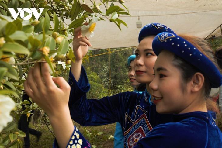 Уезд Биньлиеу в сезон цветения белой камелии масличной - ảnh 8