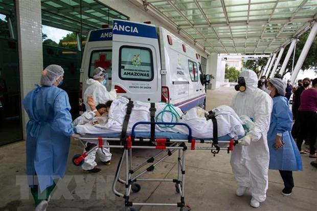 Почти 2,56 млн человек в мире погибли от COVID-19  - ảnh 1