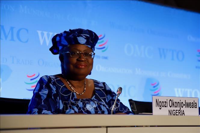 Впервые ВТО выделила женщинам половину мест заместителей генерального директора организации - ảnh 1