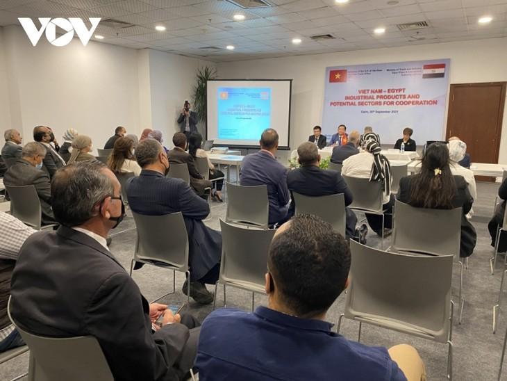 Активизация торгового обмена между Вьетнамом и Египтом после пандемии Covid-19 - ảnh 1