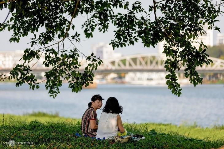 The bucolic charm of a Hue summer - ảnh 4