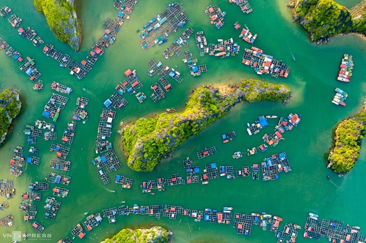 Bird-eye views accentuate paradisiacal beauty of Lan Ha Bay - ảnh 3
