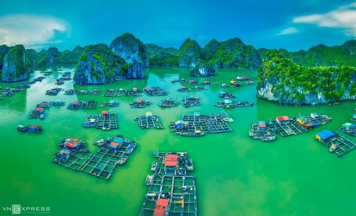 Bird-eye views accentuate paradisiacal beauty of Lan Ha Bay - ảnh 5