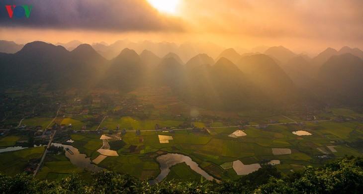 Bac Son rice fields turn yellow amid harvest season - ảnh 11
