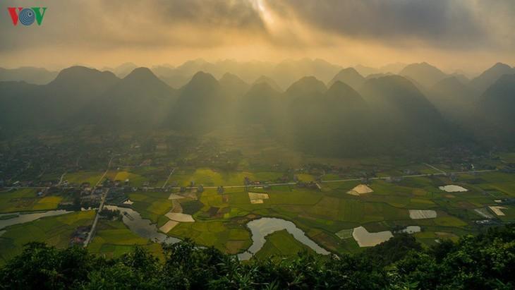 Bac Son rice fields turn yellow amid harvest season - ảnh 13