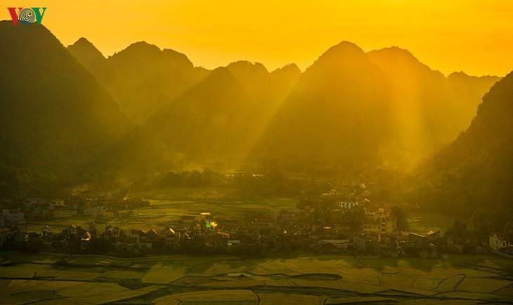 Bac Son rice fields turn yellow amid harvest season - ảnh 6