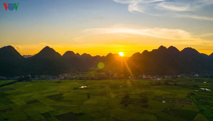 Bac Son rice fields turn yellow amid harvest season - ảnh 7