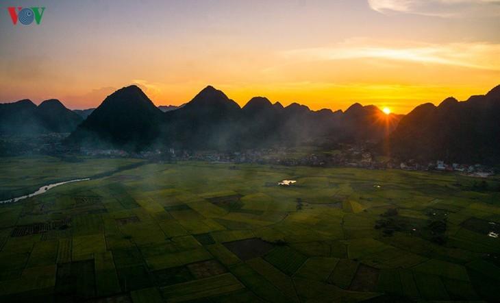 Bac Son rice fields turn yellow amid harvest season - ảnh 8