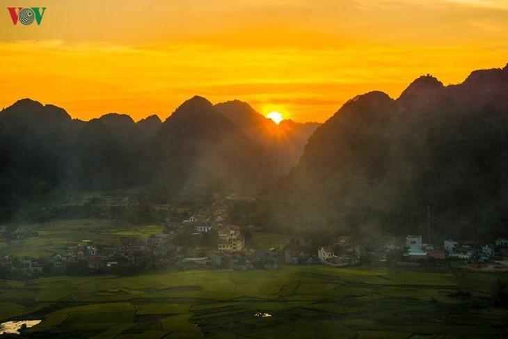 Bac Son rice fields turn yellow amid harvest season - ảnh 9