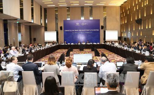 APEC offers opportunities for Vietnamese enterprises - ảnh 1