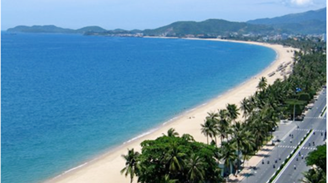 Young Vietnamese expats clean up beach in Quang Ngai - ảnh 1