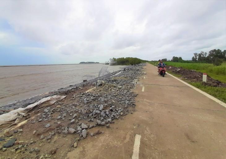 Guardian of Ca Mau's sea dykes  - ảnh 2