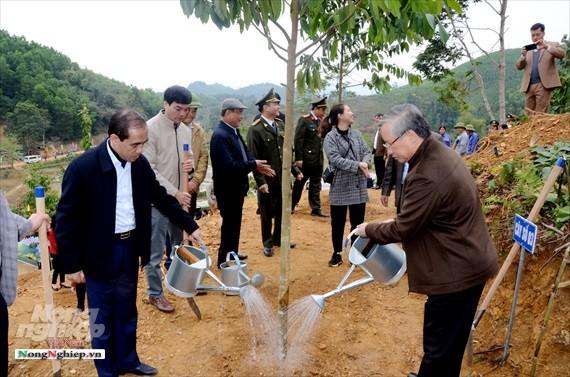 Thường trực Ban bí thư Trần Quốc Vượng dự Lễ phát động Tết trồng cây tại Tuyên Quang - ảnh 1